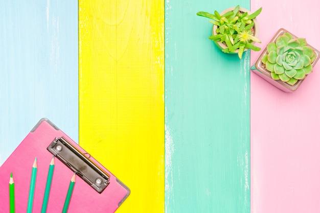 色とりどりの木製の背景にポットとピンクのクリップボードのトップビューでサボテン