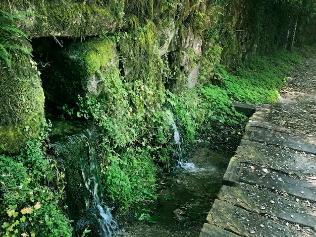 スペインの美しい緑の景色。山間の自然噴水と多くの菜園