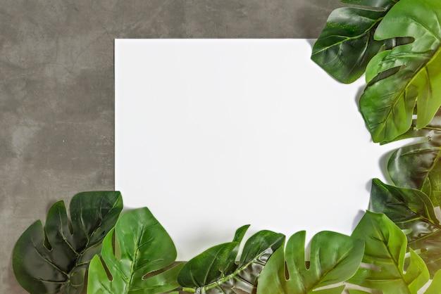 白い紙と緑の葉