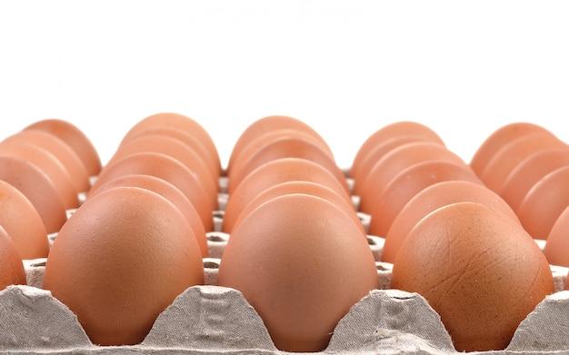 紙トレイに新鮮な卵のグループ