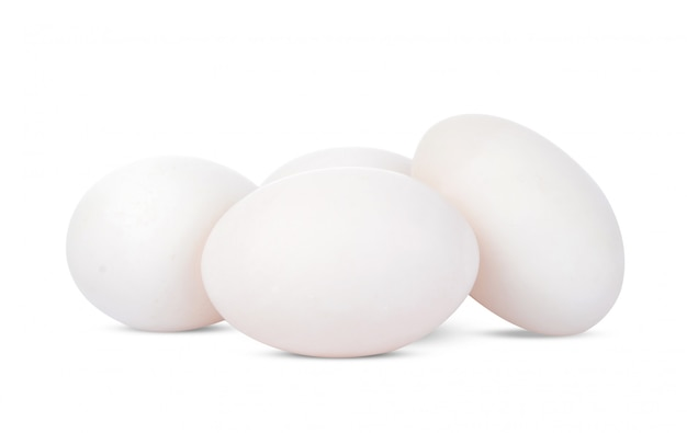 Утиное яйцо изолированы.