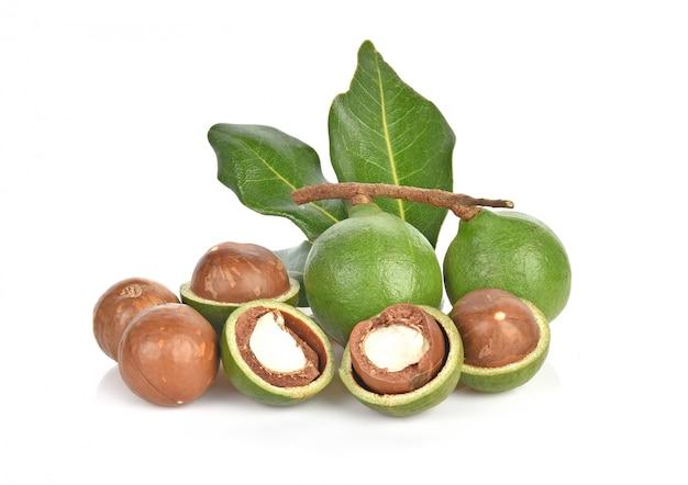 Орехи макадамии на белой стене