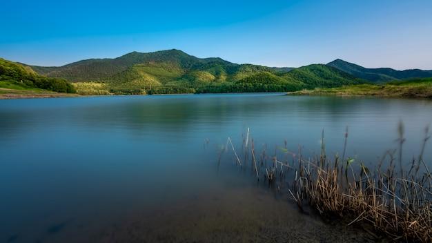 自然の景色と水の反射