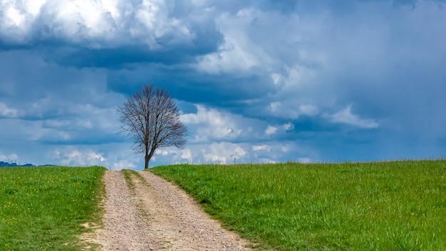 Проход с естественным видом