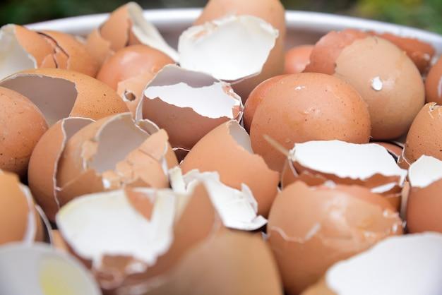 テクスチャと背景に卵殻