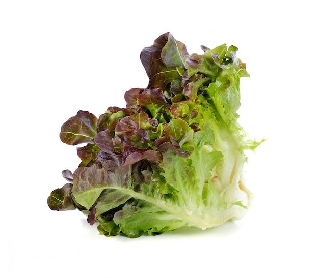 Свежий салат из красного дуба, изолированные на белом