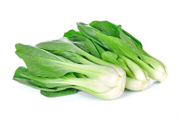 白で隔離されるチンゲン菜(白菜)