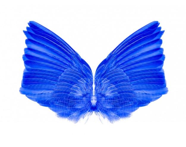 翼は白で隔離されます。