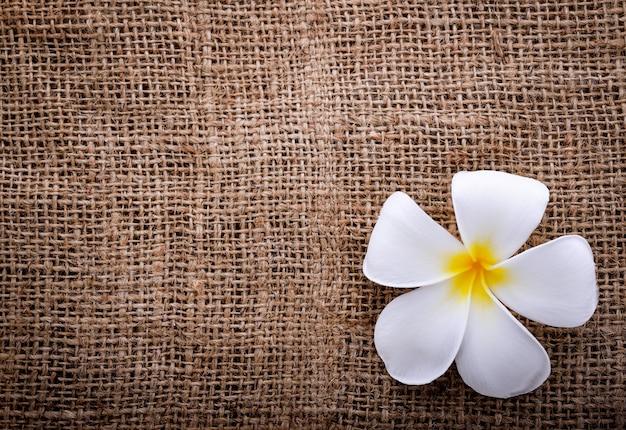 袋とプルメリアの花