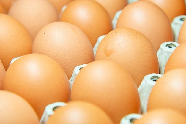 生の鶏の卵の選択と集中