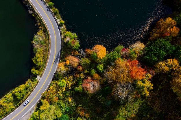 湖と秋の森空撮の道