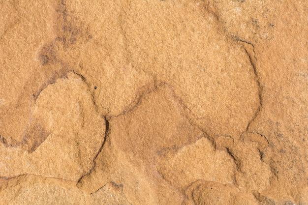 背景として茶色の石造り壁をクローズアップ。