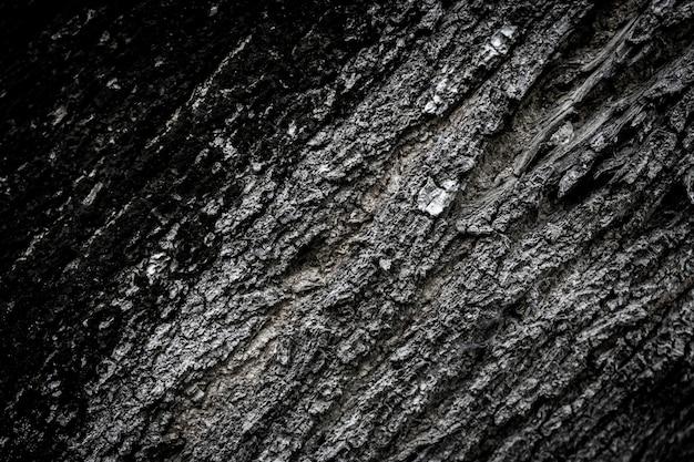クローズアップ大きな木の皮を背景として。