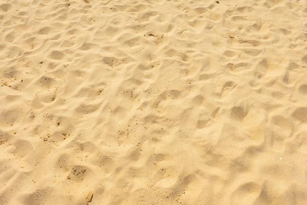 夏の太陽の下で細かい砂浜