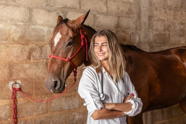 獣医師が馬を調べています。