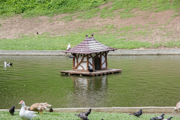 ギーヌ公園リオデジャネイロ