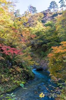 鳴子峡宮城東北日本