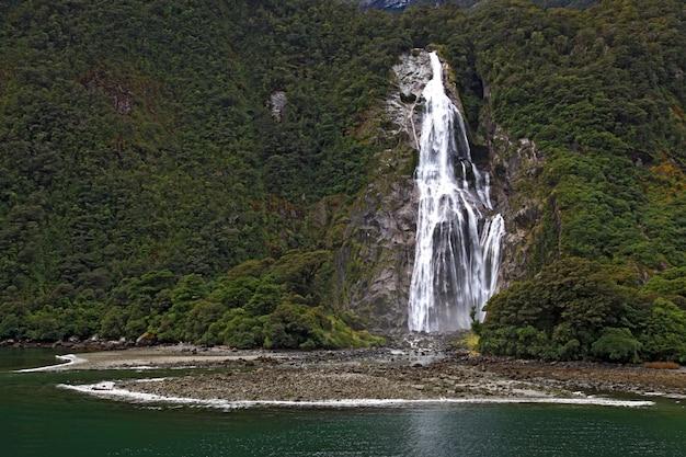 ミルフォードサウンドの熱帯雨林の滝