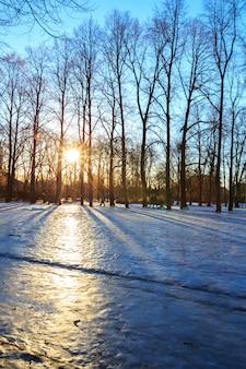 ヴィーゲラン公園冬オスロノルウェー