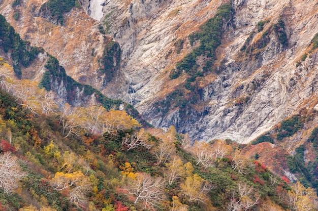 Долина хакуба, осень нагано, япония