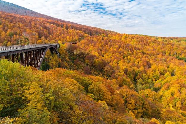 城ヶ倉大橋秋の日本