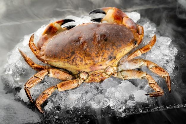 氷結氷冷たい蒸気霧で黒い石のプレートに氷のヒープ上の新鮮な生フロリダ石カニ。市場のコンセプトで新鮮な魚介類。