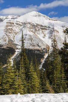 カナダのアルバータ州のバンフ国立公園で雪をかぶったカナダのロッキー山脈