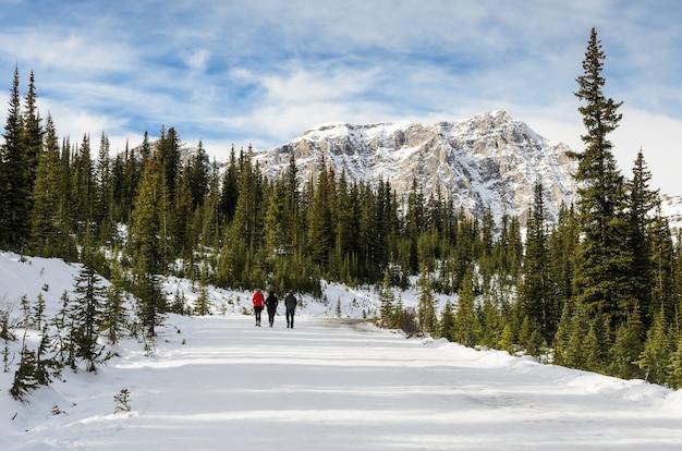 カナダのアルバータ州のバンフ国立公園でペイト湖へのパノラマトレイル