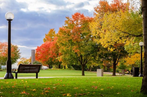 カナダ、オタワのメジャーズヒルパークの秋のメープルカラー