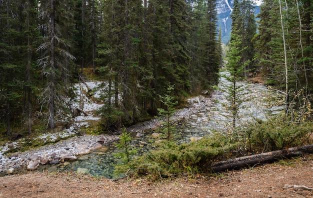 カナダ、アルバータ州バンフ国立公園のジョンストンキャニオントレイル