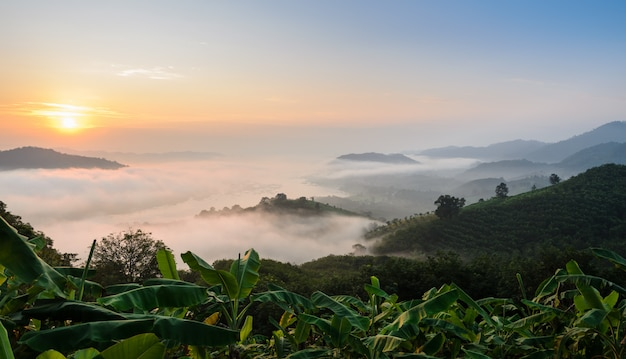 タイノンカイ県のメコン川の上の霧の海の日の出
