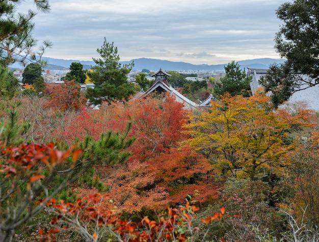 京都の秋のシーズン中に天龍寺の空撮