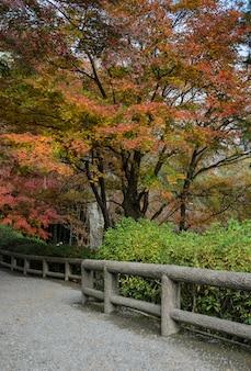 京都の秋のシーズン中に天龍寺の日本の秋の庭
