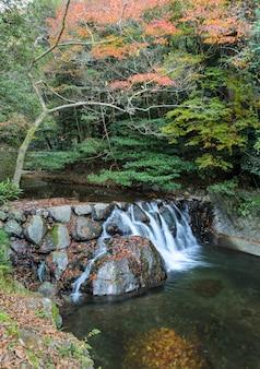 Водопад в национальном парке миноо или мино осенью, осака, япония