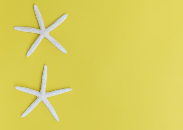 Плоские лежали звезды рыбы на желтом фоне, вид сверху