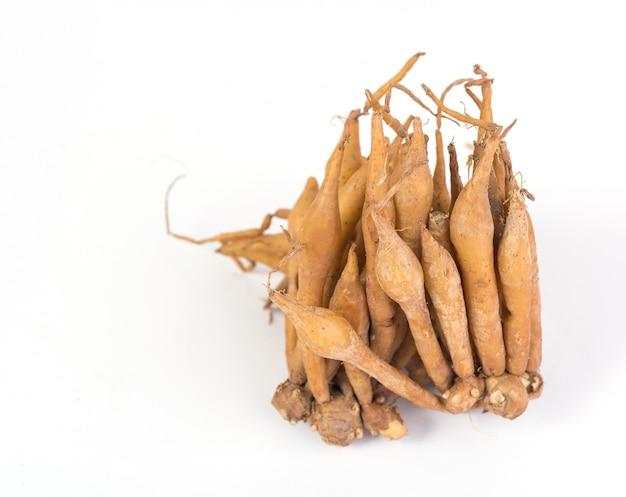 Изолированный корень пальца, полезный для тайских трав, специй и пищевого ингредиента