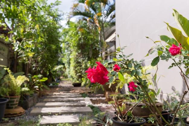 Ландшафтный современный простой каменный путь в садовом убранстве