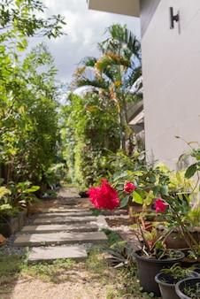 Ландшафтная современная простая каменная тропа в саду