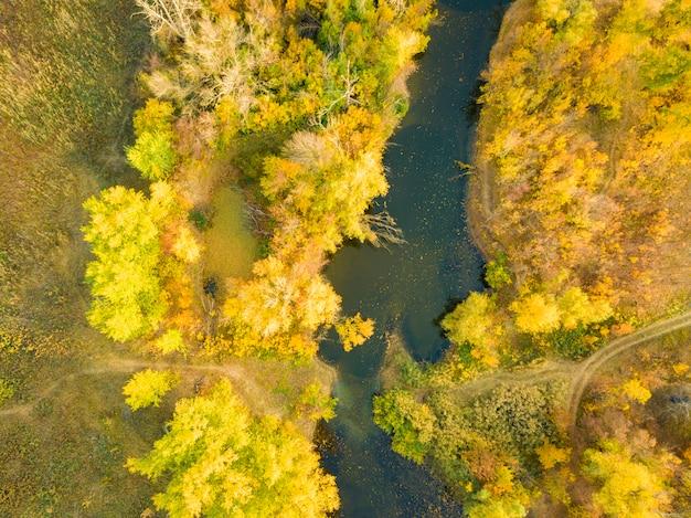 日没の川と自然林の空中パノラマ風景
