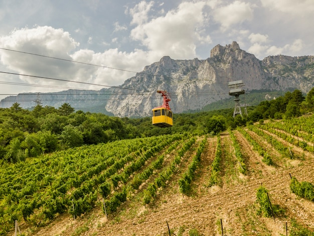 黄色い小屋のケーブルカーは、夏のシーズン中に人々を山頂に運びます。