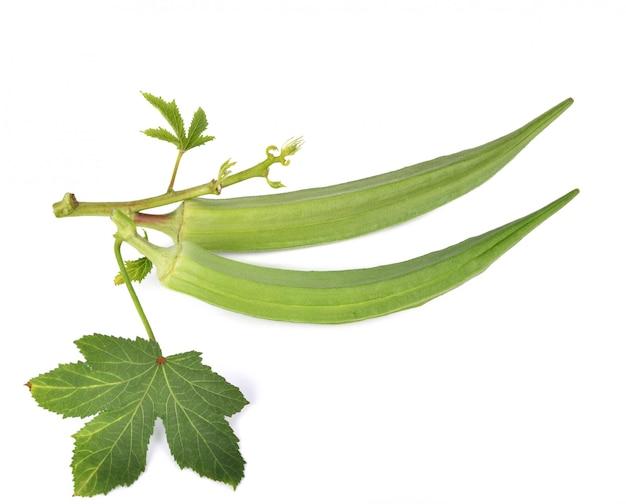 白い背景に新鮮なオクラまたは緑色のロゼル。
