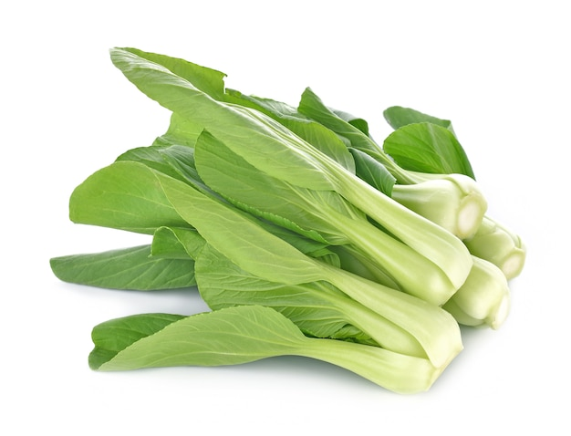 白菜の白い背景で隔離