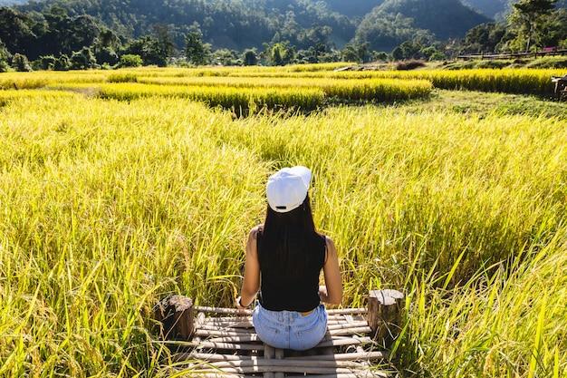 田んぼに旅行者の女性