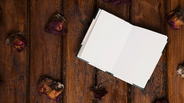 Открытая книга с сушеными цветами на деревянном фоне