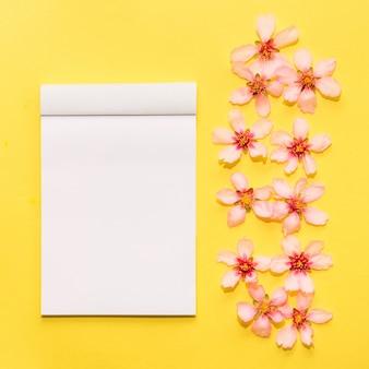 黄色の背景に春の花でモックアップします。