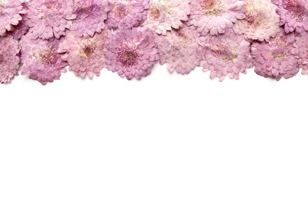 ピンクの花の背景は白で隔離されます。