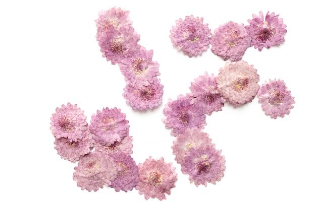 抽象的なピンクの花の背景は白で隔離されます。