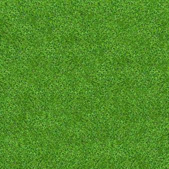 Текстура зеленой травы для предпосылки. зеленая картина лужайки и предпосылка текстуры. крупный план.