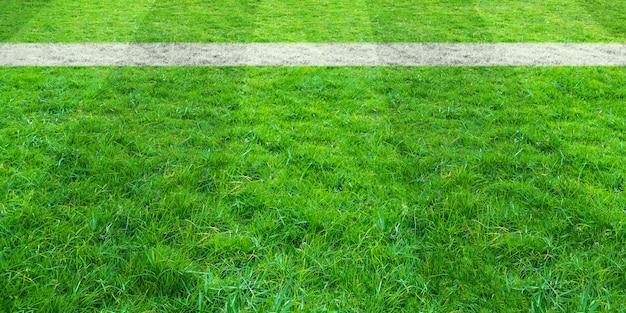 サッカー場の緑の芝生でサッカーライン。背景の緑の芝生フィールドパターン。