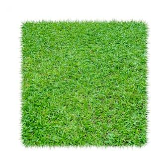 緑の草。自然な風合いの背景。新鮮な春の緑の芝生。白い背景で隔離